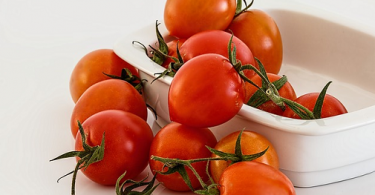can chickens eat tomatoes