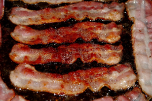 can dogs eat bacon