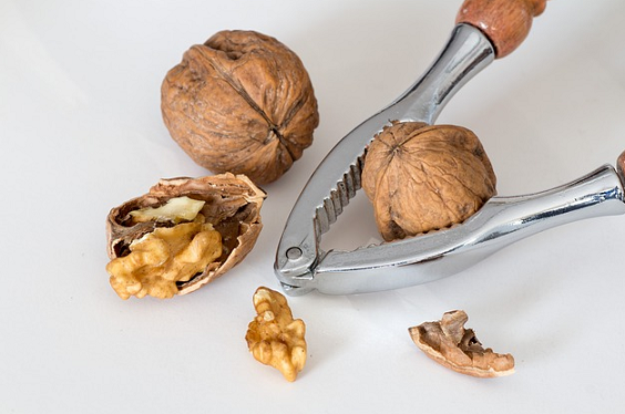Can Dogs Eat Walnuts? Are Walnuts Good Or Bad For Dogs?