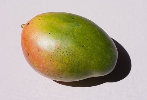 can guinea pigs eat mango