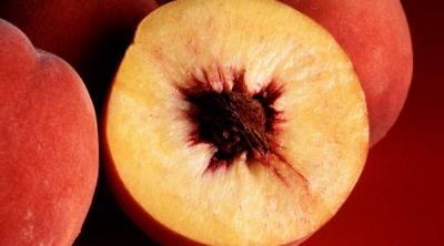 can guinea pigs eat peaches