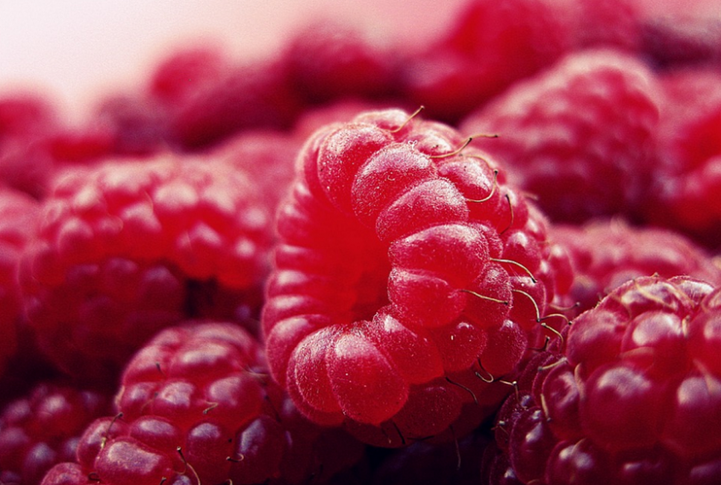 can dogs eat raspberries