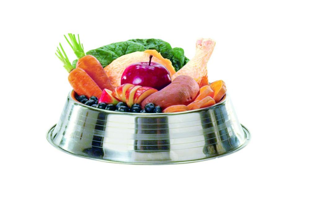 Grain Free Dog Food Benefits