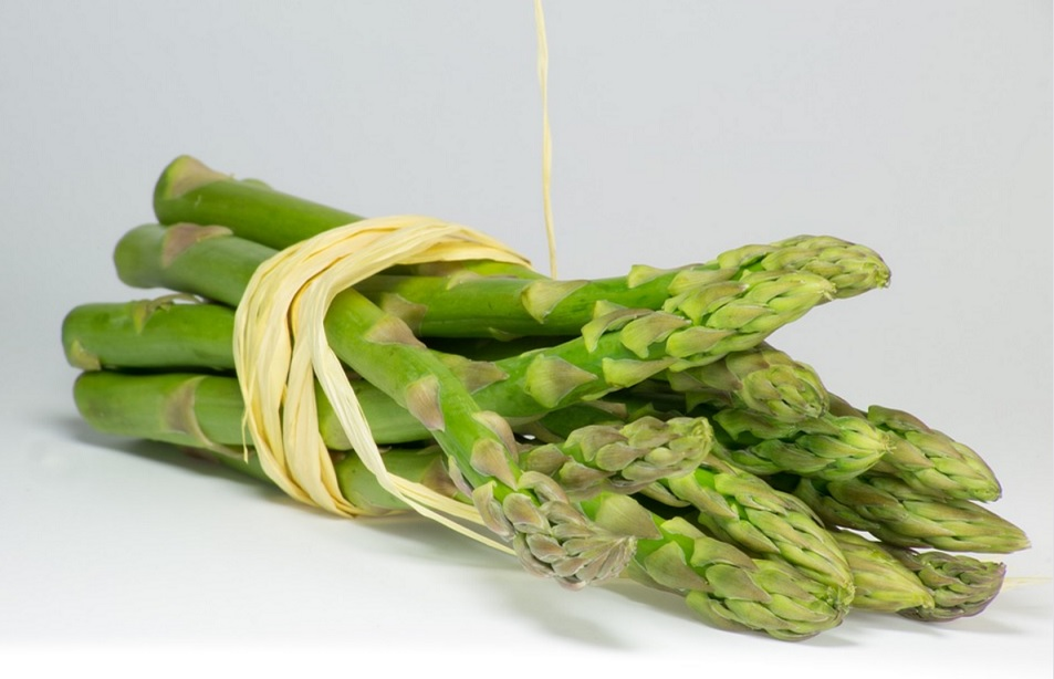 Can Dogs Eat Asparagus: Raw or Cooked?