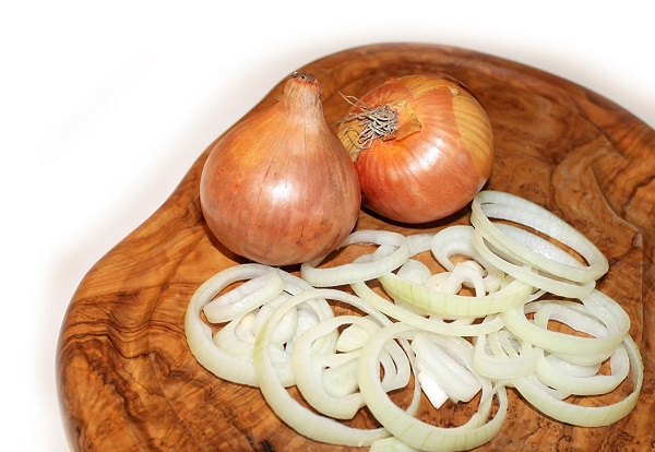 can cats eat onions