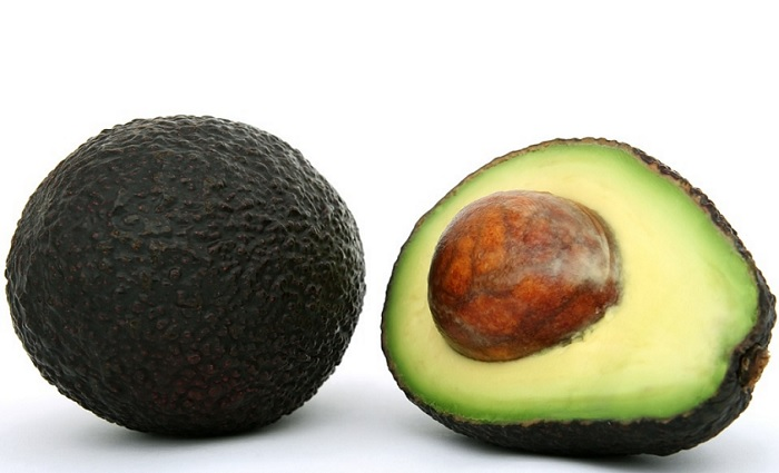 Can Dogs Eat Avocado? Is Avocado Good Or Bad For Dogs?