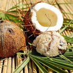 Can Dogs Eat Coconut? How About Coconut Oil, Water & Milk?