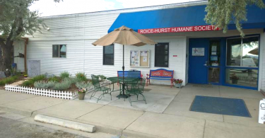 Shelter Started Taking in Dogs from Other States
