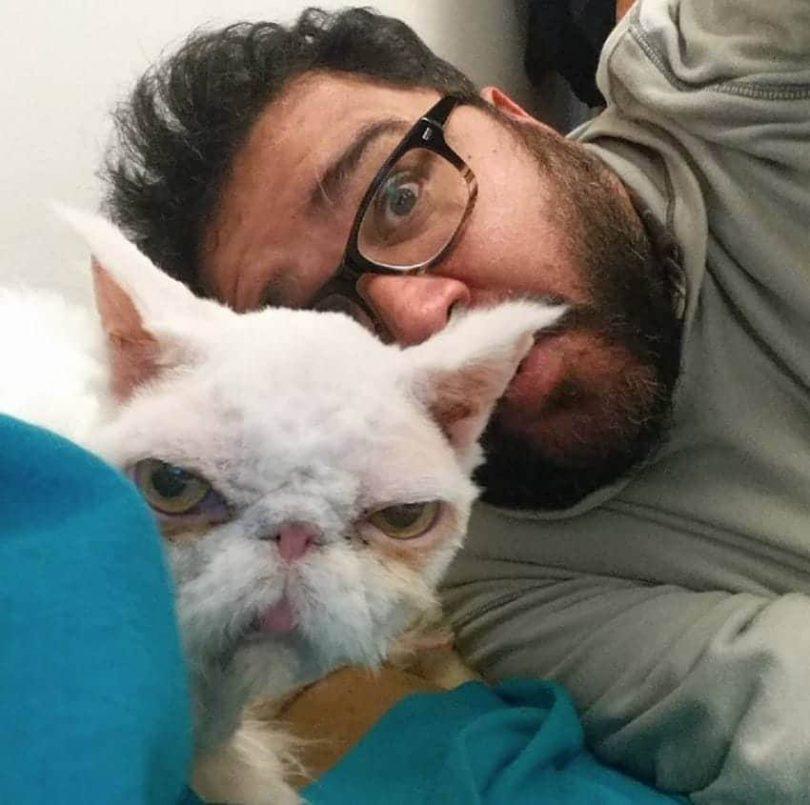 The Adventures of Sinbad the Cat