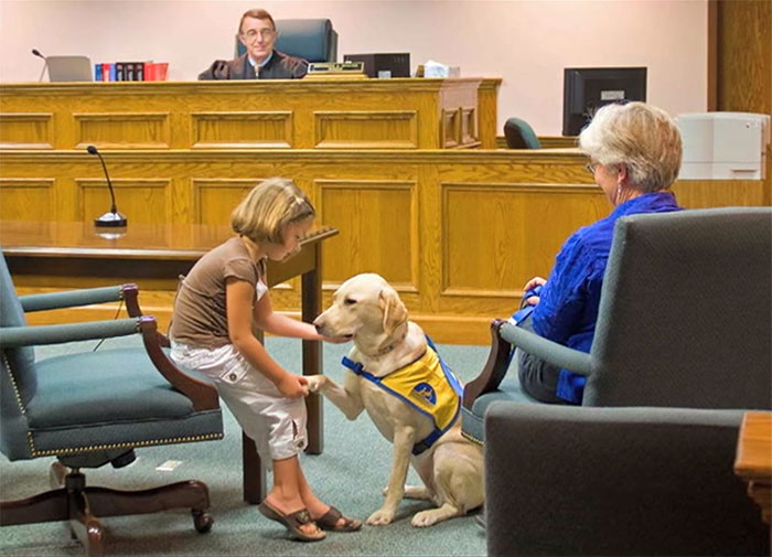 Courthouse Dog On Staff In Virginia