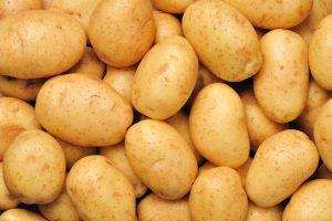 Can Horses Eat Potatoes