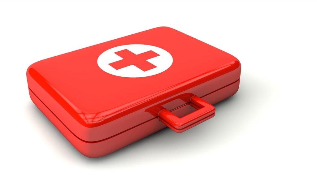 The Pet First Aid Kit: What Should it Contain
