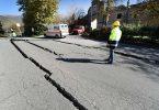 can pets sense earthquakes