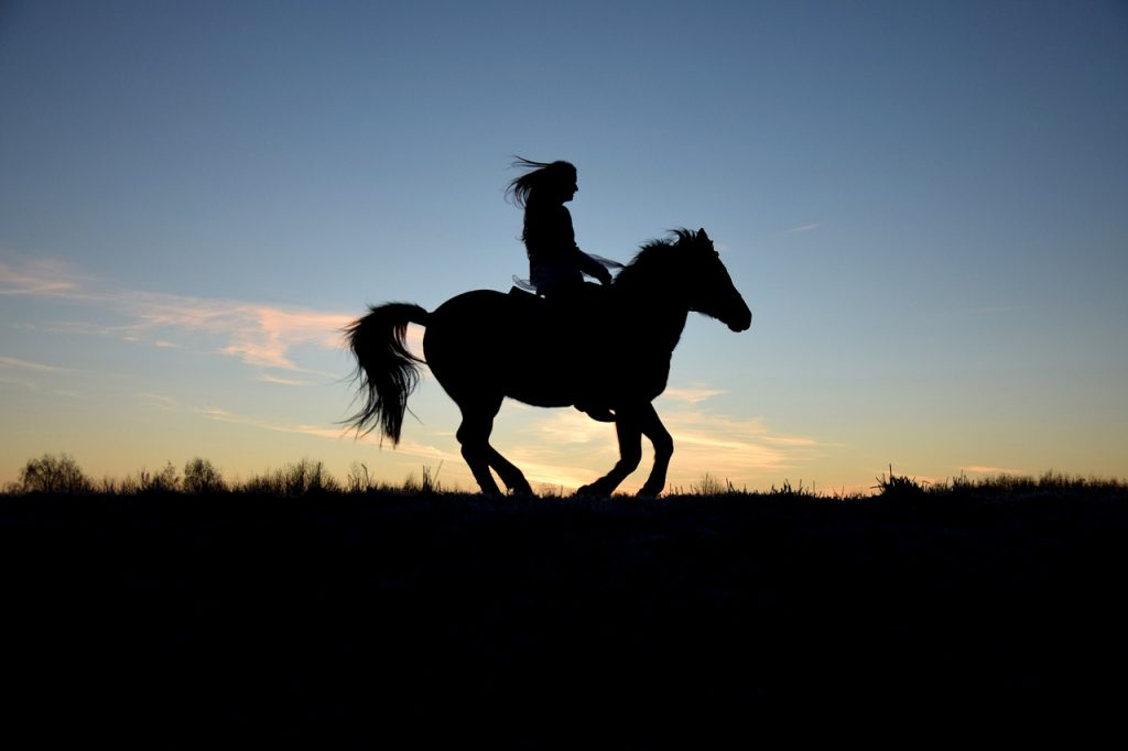 Five Beginner Horse Riding Mistakes To Avoid
