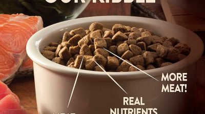 Best Dog/Puppy Food for Pit Bulls