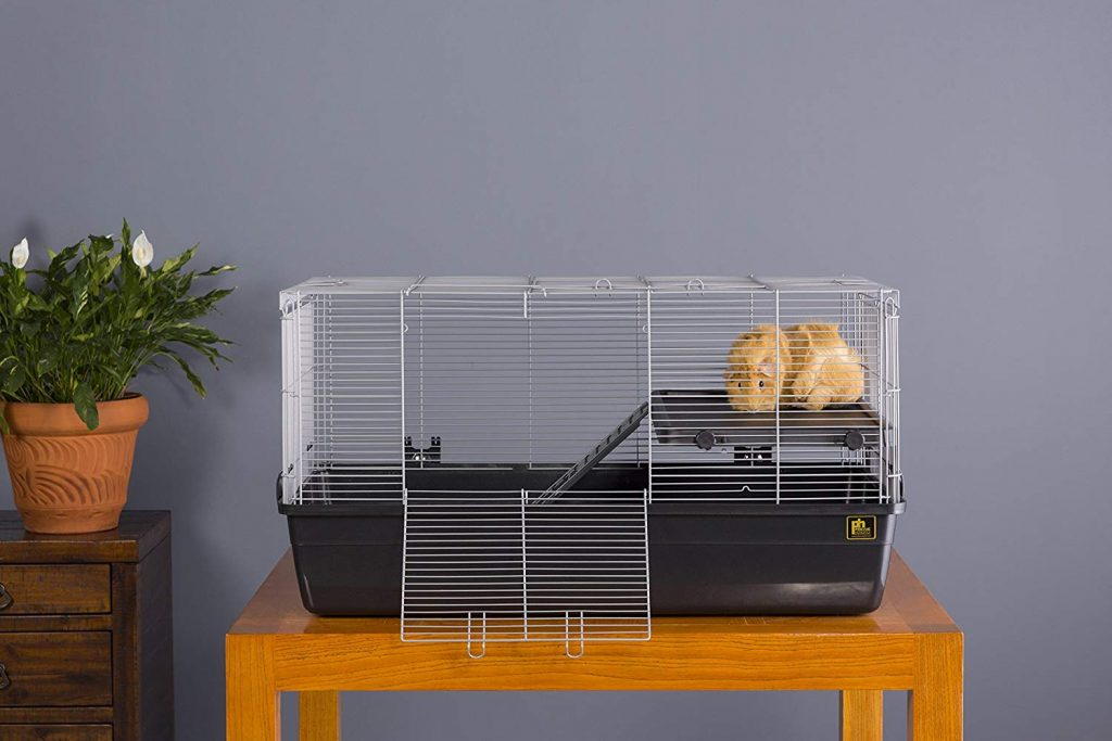 6 Of The Best Guinea Pig Cages To Buy This Year