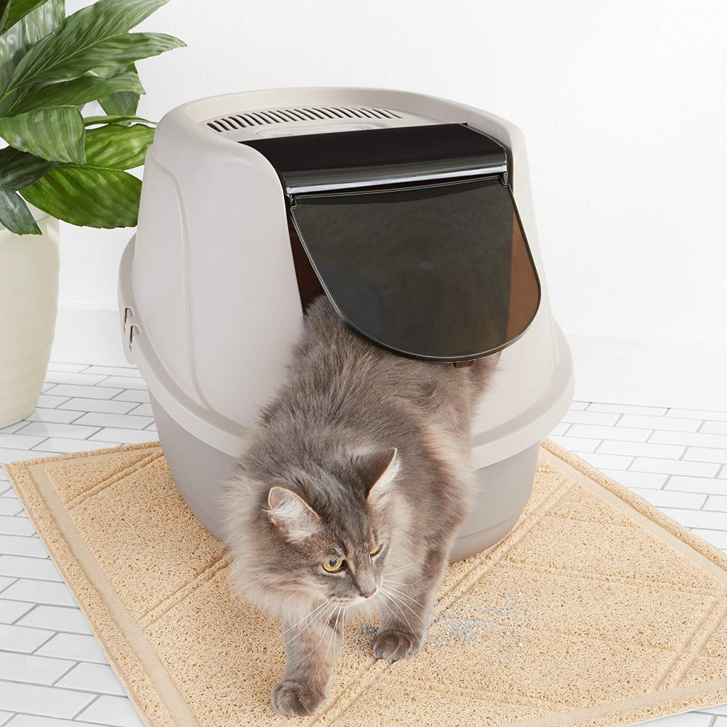 Dog Proof Litter Box – Keep Your Dogs Away From Cat Poop!