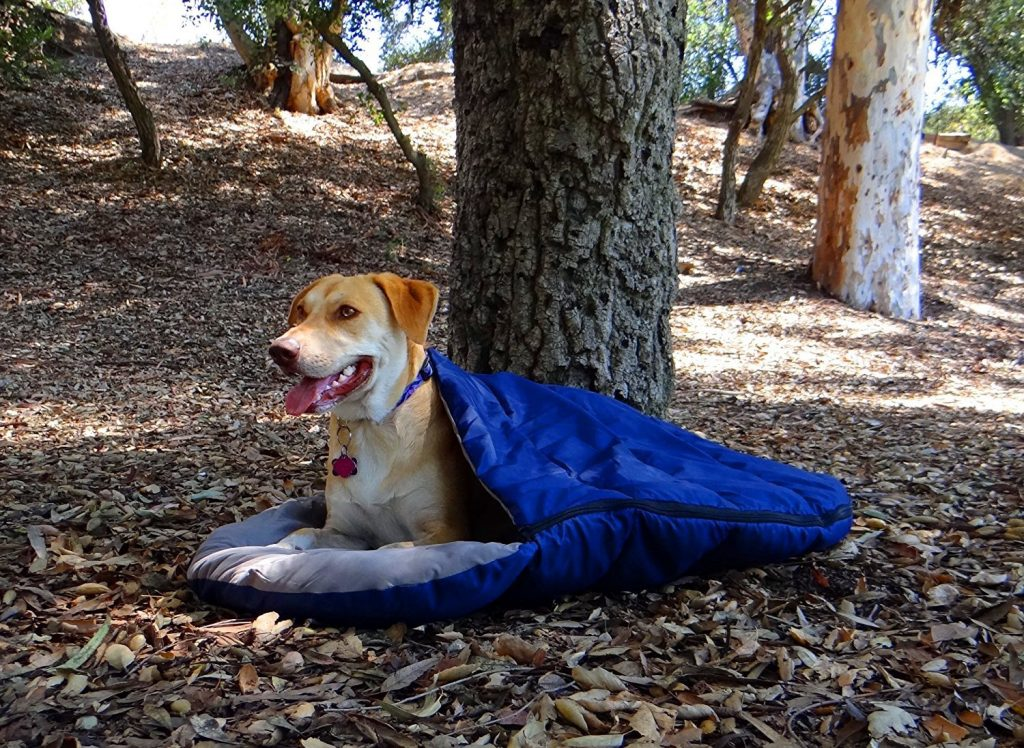 A Doggy Guide To Dog Sleeping Bags